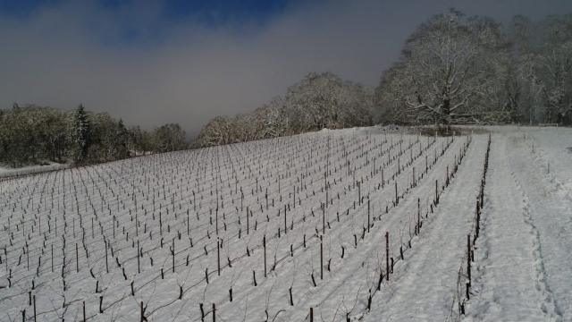 March 2017 Snowfall